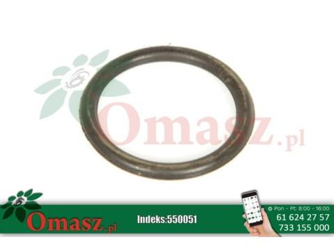 Pierścień, uszczelka filtra oleju Bizon